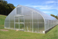 Affordable Greenhouse Tunnel for sale - For Sale, Gardening Tools & Plants For Sale, Bloemfontein, Free State