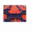 Grade-A fresh red tomatoes at low discount price, General Items For Sale, Tzaneen, Limpopo